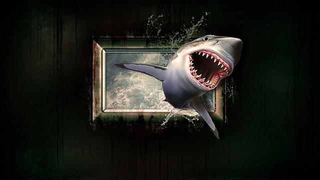 žralok v okně