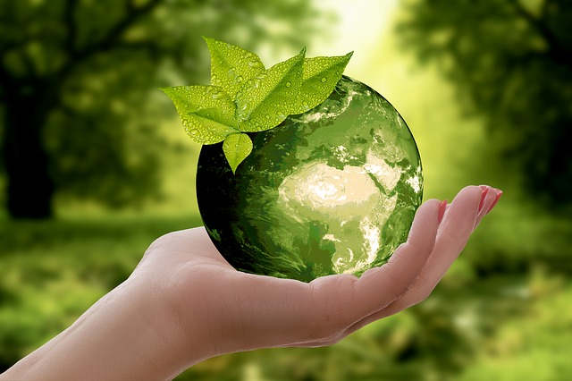 Ženská ruka, zelená zemeguľa.jpg
