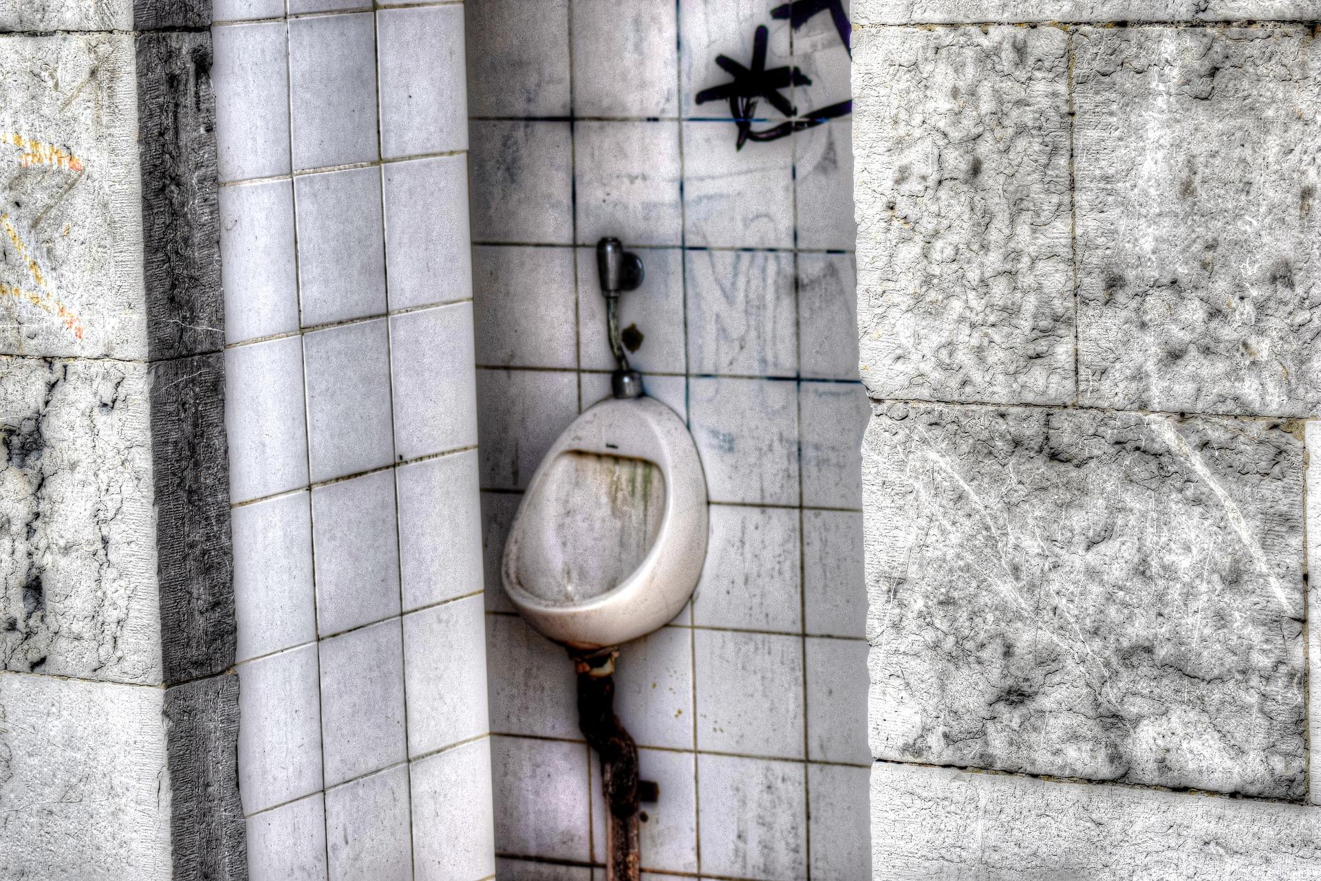urinal-2318562_1920